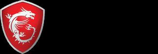 partner msi